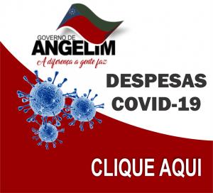 ACESSO TOTAL AO PORTAL DA TRANSPARÊNCIA COVID-19 (coronavirus)